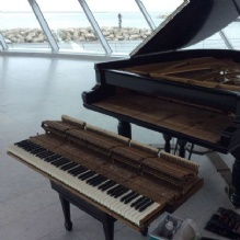 Piano Services in Mequon, Wisconsin